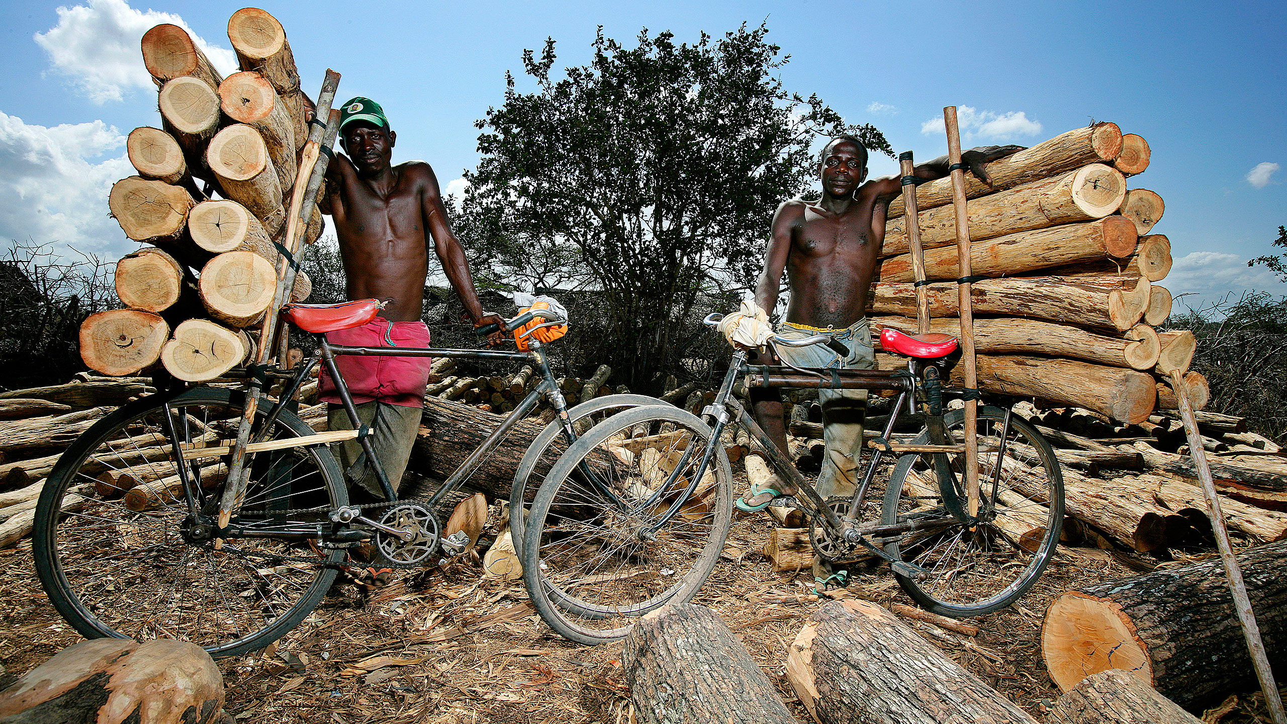 Brent Stirton / Getty Images