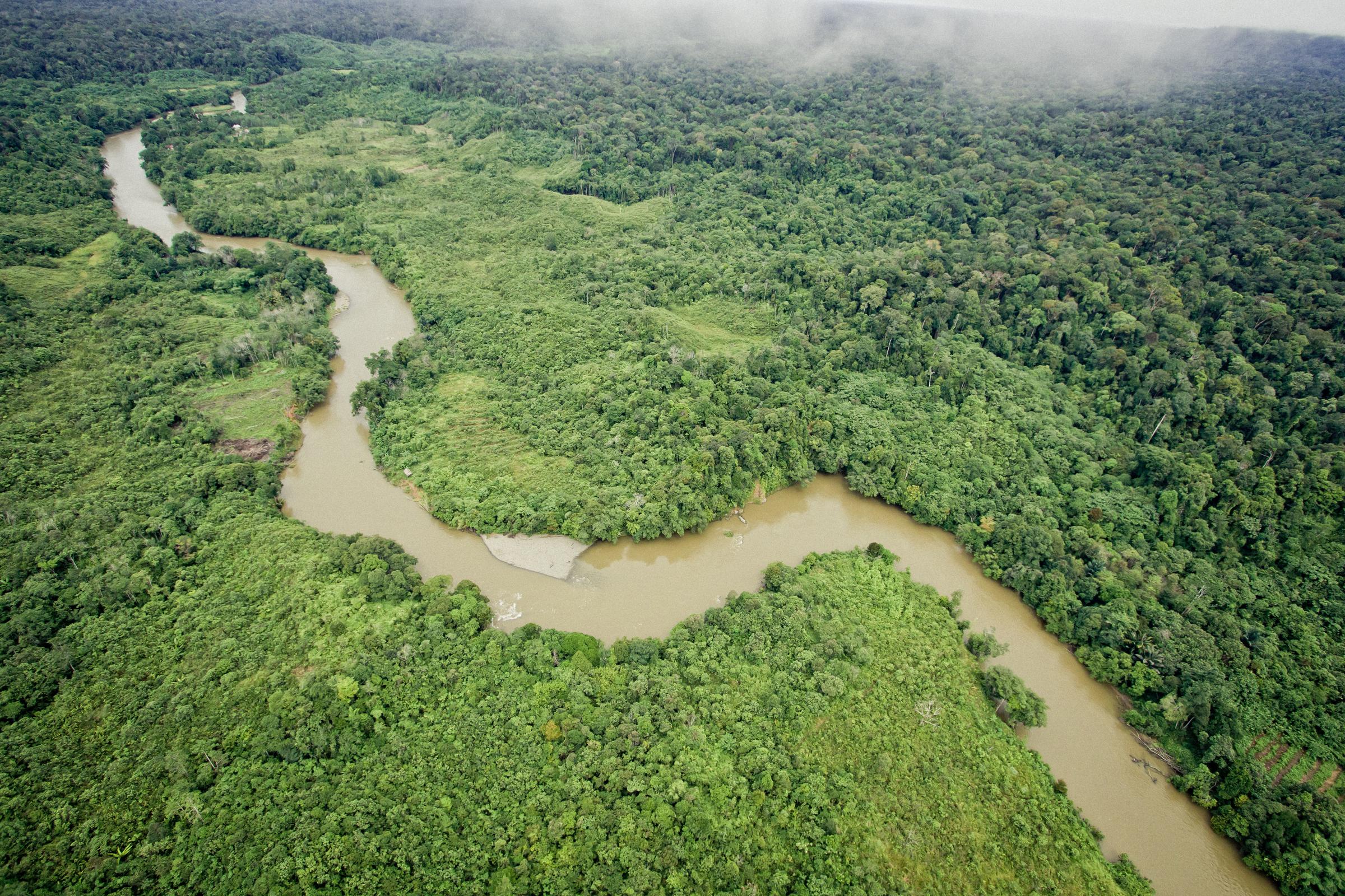 Borneon Saari