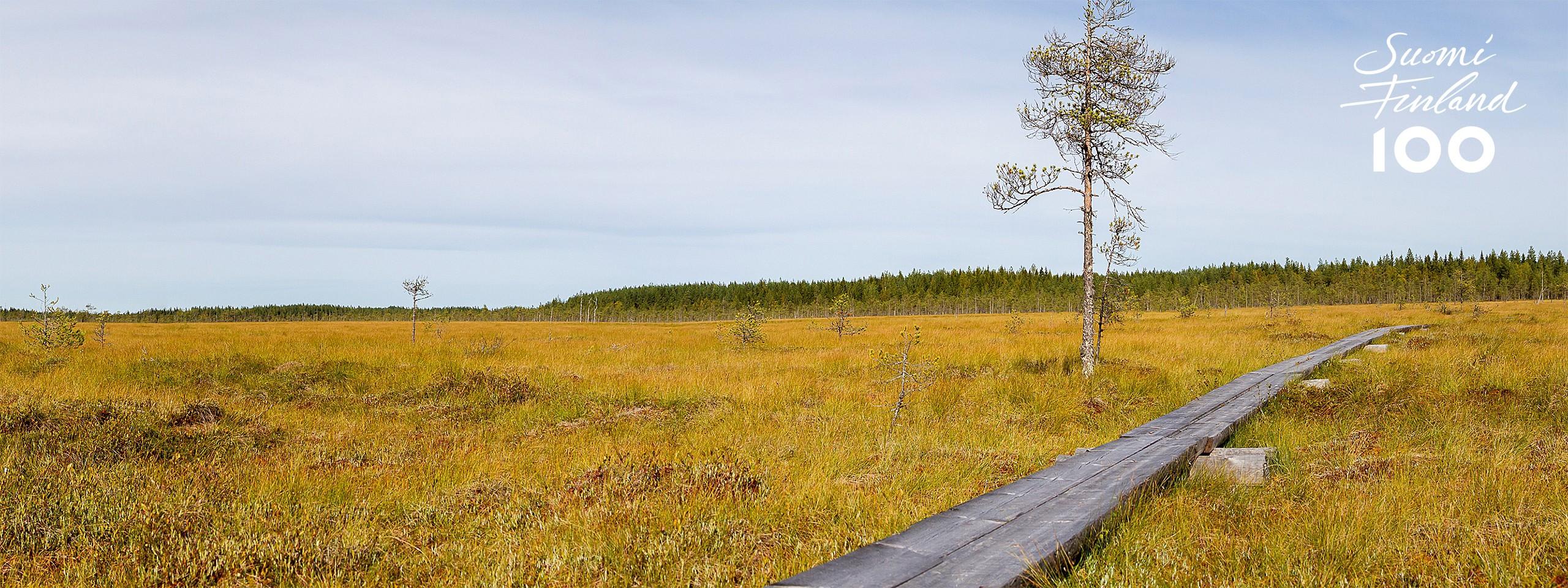 Lahjoita satavuotiaalle Suomelle palanen suojeltua luontoa - WWF 0e8bad6c9a
