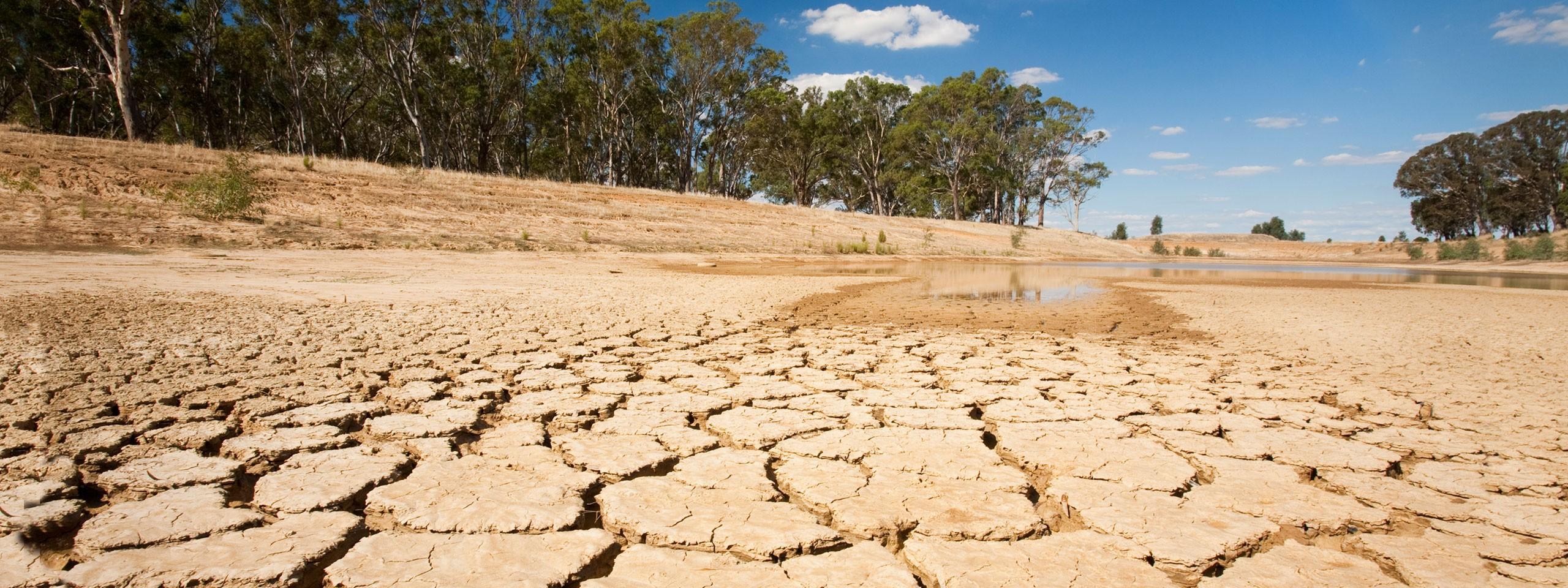 Ilmastonmuutos Vaikutukset