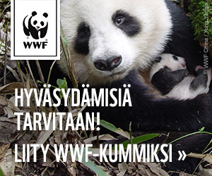 Liity WWF-kummiksi!