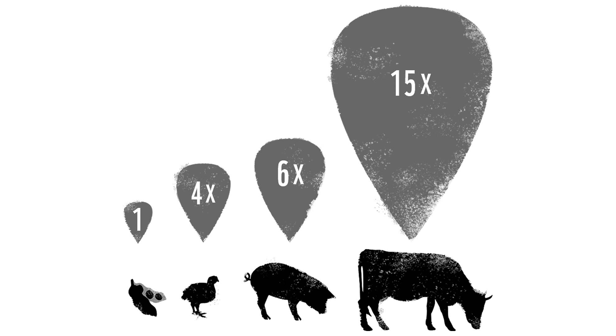 Lihantuotanto Ympäristövaikutukset