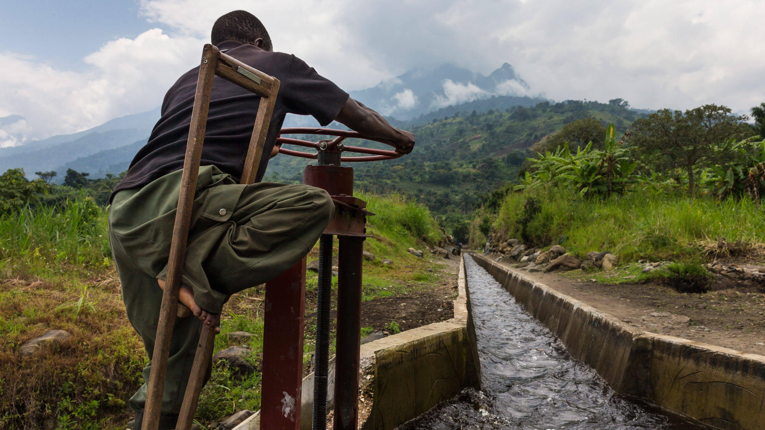 Brent Stirton / Reportage by Getty Images / WWF-Canon