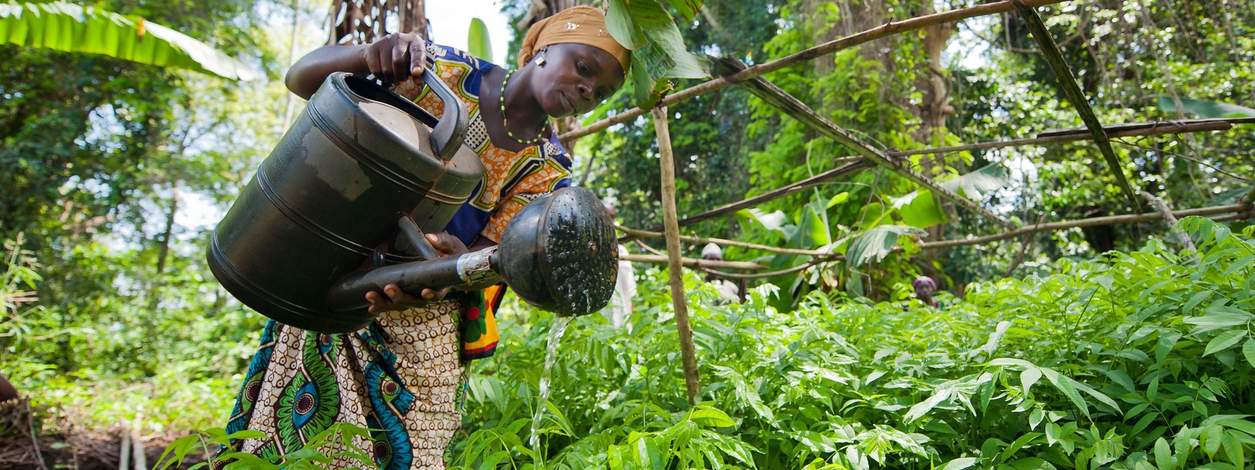 Afrikan Luonnonvarat